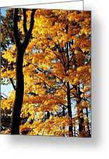 Pitchfork In Autumn Light Greeting Card