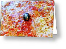 Pizza Pie With Olive Greeting Card