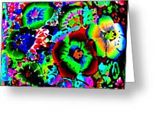 Pizzazz 15  Greeting Card