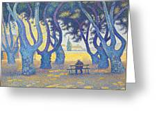 Place Des Lices St Tropez Greeting Card