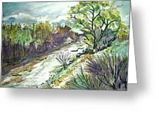 Placerita Creek 3 Greeting Card
