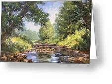 Placid Stream Greeting Card
