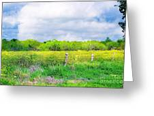 Plain Country Greeting Card