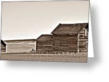 Plains Homestead Sepia Greeting Card