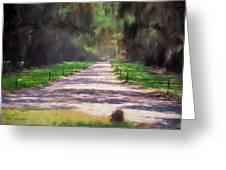 Plantation Road South Carolina Greeting Card