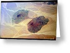 Planet Art Close Encounters Greeting Card