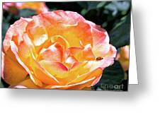 Planet Of The Rose Greeting Card