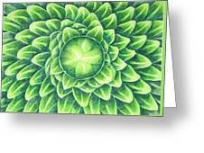 Plant Design Greeting Card