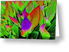 Plant Details Greeting Card