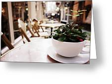 Plant In A Cup In A Cafe Greeting Card
