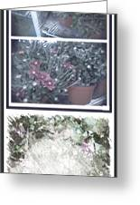 Plant Life  Greeting Card