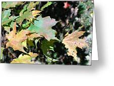 Planting Fields / Leaves Greeting Card