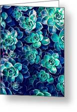 Plants Of Blue And Green Greeting Card