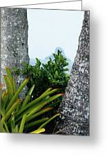 Plantside The Island Greeting Card