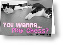 Play Chess? Greeting Card