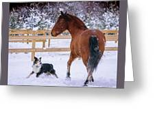 Play With Me Greeting Card