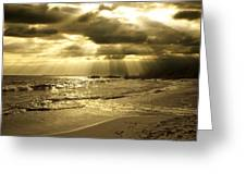 Playa De Oro Greeting Card