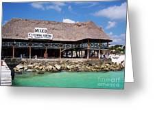 Playa Del Carmen Maritime Terminal Mexico Greeting Card by Shawn O'Brien