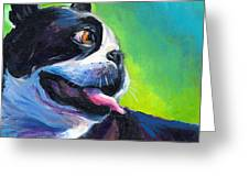 Playful Boston Terrier Greeting Card by Svetlana Novikova