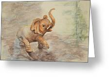 Playful Elephant Baby Greeting Card