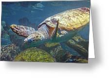 Playful Green Sea Turtle Greeting Card