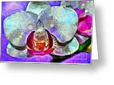 Playful Orchid Greeting Card