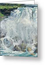 Playing In The Mist - Niagara Falls Greeting Card