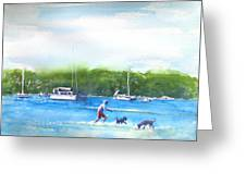 Playing With The Dogs At Rose Bay Greeting Card