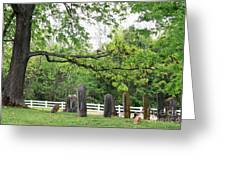 Pleasant Forest Cemetery Greeting Card