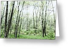 Pleasure Of Pathless Woods - Alt Greeting Card