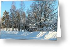 Plowed Winter Street In Sunlight Greeting Card