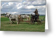 Plowing In Lancaster County Greeting Card