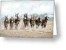 Plowing The Fields Greeting Card