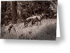 Plowman And Team Of Horses Greeting Card
