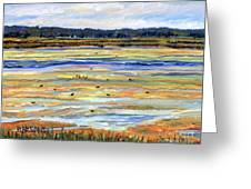 Plum Island Salt Marsh Greeting Card