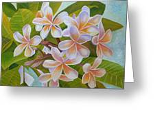 Plumeria Greeting Card by Angeles M Pomata