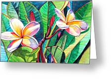 Plumeria Garden Greeting Card by Marionette Taboniar