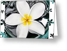 Plumeria In Water Greeting Card
