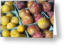 Plums Greeting Card by John Greim