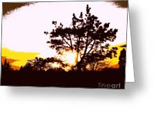 Pnw Sunset Greeting Card
