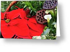 Poinsettia Basket For Christmas Greeting Card