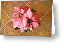 Poinsettias -  Pinks On Tile Too Greeting Card