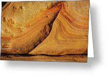 Point Lobos Abstract 108 Greeting Card