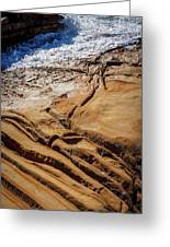 Point Lobos Abstract Greeting Card