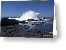 Point Lobos Seascape 2 Greeting Card by Stan and Anne Foster