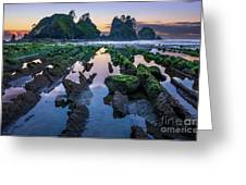 Point Of The Arches Greeting Card