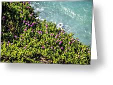 Point Reyes National Seashore Coast On Pacific Ocean Greeting Card