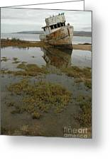 Point Reyes Reflection Greeting Card