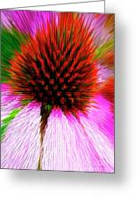 Pointed Flower Greeting Card