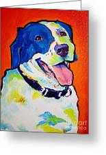 Pointer - Causi Greeting Card by Alicia VanNoy Call